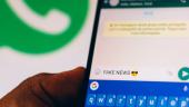 blog fake news 705x305
