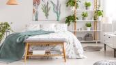 Urban jungle: como incluir essa tendência na decoração